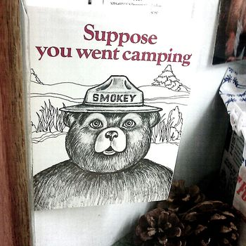 smokey_the_bear_love