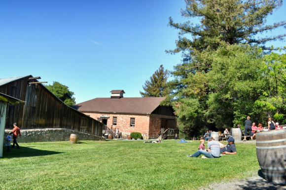 Winery_lawn